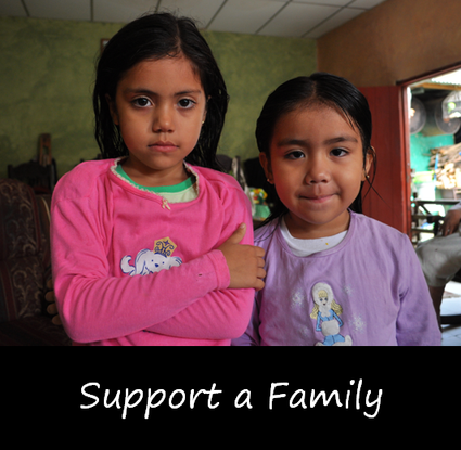 Size_550x415_family_support