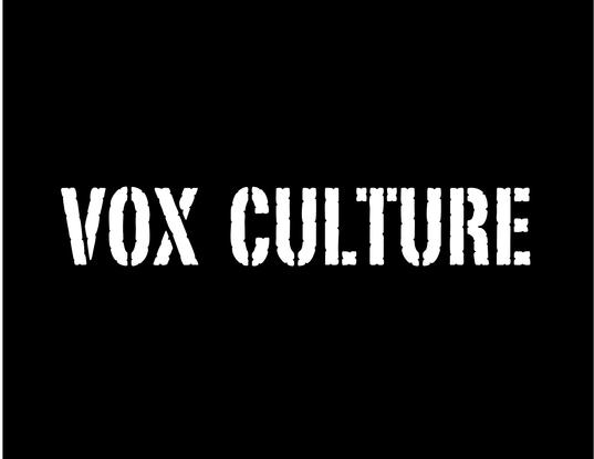 Size_550x415_vox%20culture%20logo