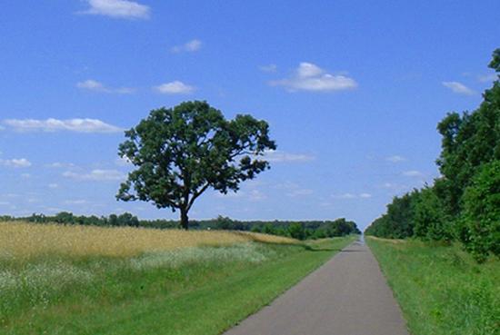 Size_550x415_sunrise-prairie-trail2