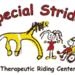 Size_75x75_special-strides-logo-razoo