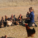 Free-range chicken farming in Africa using locally-adapted breeds