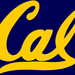 College 4 Day, CAL BEAR 4 Ever!