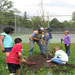 People for Parks has given away over $15,000 per year for trees the last 4 years.