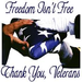 Our freedom comes at a great price that is paid by our troops and veterans.