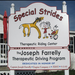Special Strides Therapeutic Riding Center - a magical place that I'm thrilled to be fundraising for!