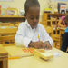 Studying in the Montessori Classroom