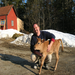 Dan Brown, Gravelwood Farm, East Blue Hill, Maine with Springdale Rocket's Co-Pilot (aka Sprocket)