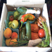 The wonderful Bounty provided by the CNP's Veggie Van!