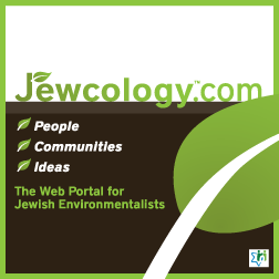Size_550x415_jewcology-magnet-twitter