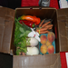 Just one of the small Veggie Van's boxes provided.