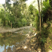 The bridge site during the dry season. During the wet season, the river floods and becomes completely impassable.