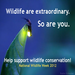 For more about National Wildlife Week, visit http://www.nwf.org/wildlifeweek