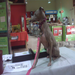 Ginger was on the lookout for her new home in 2011 at this Petco booth.  Maybe she will find it in 2012.