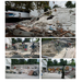 Earthquake Clean Up Collage.