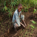 Orphans program participant using his permaculture training.