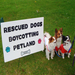 Sponsor a Petland Protest and Dismantle Puppy and Kitten Mills