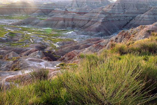 Size_550x415_badlands_ray_reiffenberger