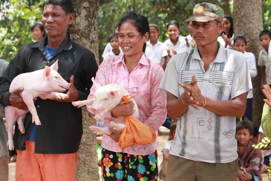 Size_550x415_cambodiamicroenterprise