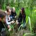 Environmental sustainability is another of our core values & our wetlands provide a unique resource for our students.
