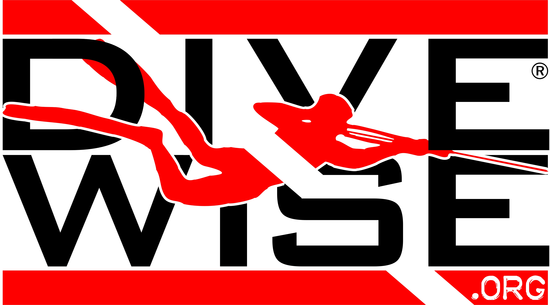 Size_550x415_divewise%20logo