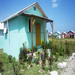 One of the houses from the November Build it Week 2011 complete with some pretty flowers. (Leogane, Haiti)