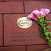 A memory brick friends pitched in to purchase in Lauren's memory at UF in Gainesville, FL.