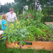 Gardens for families and daycare centers transform hunger