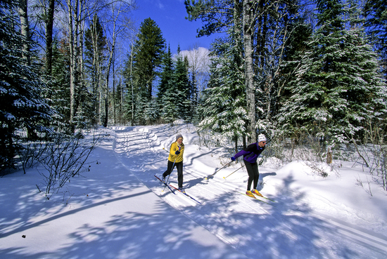 Size 550x415 cross country skiing