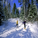 Winter recreation on conserved lands