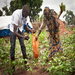Nonviolent Peaceforce South Sudan staff help women in the community garden.