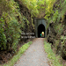 Tunnel Hill Trail, Tunnel Hill, Illinois. Photo Thomas Photographic Services