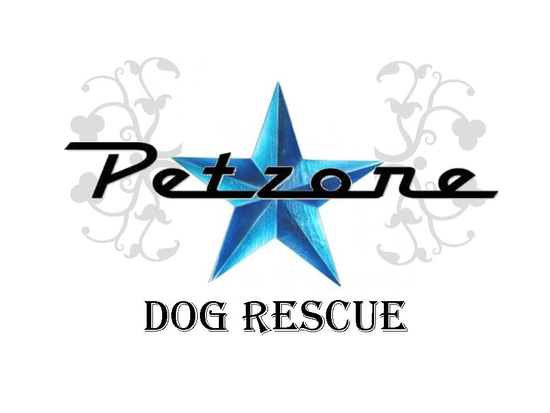 Size_550x415_petzone%20star%20logo