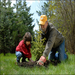 Different generations work together to plant trees, which directly effects the environment and helps educate the youth.