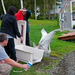 Fish Creek swan release