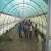 Children marching through the greenhouse before planting time