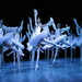 Bayadere. Winter Performances 2012