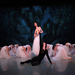 Giselle. Spring Performance 2012