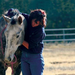 Equine Assisted Mental Health