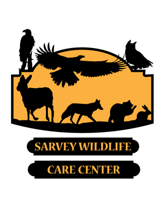 Size 550x415 sarvey wildlife care center