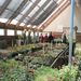 A tour learns about plants in the greenhouse