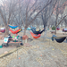 Seven hammocks, one campsite.