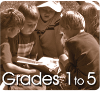 Size_550x415_grades_new2