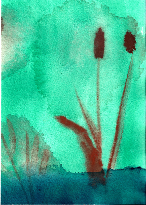 Size 550x415 donna%20g.%203 12%20watercolor%20cattails