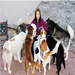 Robynn, the founder of our group, with some of her rescues.