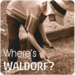 Follow our Where's Waldorf Campaign at www.waldorfsarasota.com