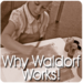 Waldorf Sarasota | Explore the reasons why a Waldorf education works