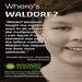 Where's Waldorf | Gabriel Monahan, Graduate of Waldorf Sarasota