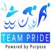 Team PRIDE 2013 - General Team Donations