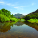 Gila River, New Mexico's Last Free-flowing River, Photo by Gordee Headlee
