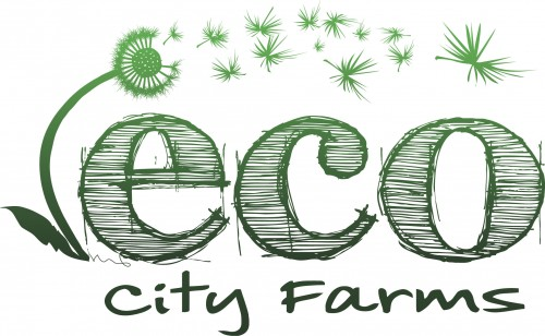 Size_550x415_eco-city-farms-logo-